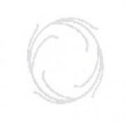 Disc de centrare pentru cartuse filtrante NI-212-CENT_K