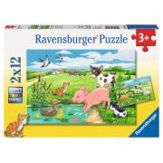 PUZZLE ANIMALE LA FERMA, 2X12 PIESE - RAVENSBURGER (RVSPC07582)