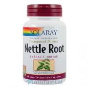Nettle Root (Urzica) 300 mg 60 capsule