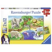 PUZZLE ZOO, 2X12 PIESE - RAVENSBURGER (RVSPC07602)