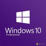 Windows 10 Professional Product key 15 min email delivery