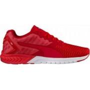 Pantofi Sport Barbati Puma Ignite Dual Red Marimea 43