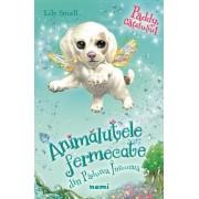 """Paddy, catelusul (seria Animalute fermecate din Padurea inrourata)"" - Lily Small"