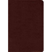 Amplified Holy Bible, Indexed - Captures the Full Meaning Behind the Original Greek and Hebrew (Zondervan Publishing)(Leather / fine binding) (9780310443957)
