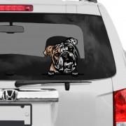 Angol Bulldog rajzos autómatrica