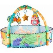 Centru de activitati 2 in 1 ideal pentru bebelusi salteluta 5 jucarii detasabile si tarc cu 30 bile multicolore