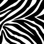 Brewster Wall Pops WPB99051 Peel and Stick Go Wild Zebra Decals, Four 13-Inch Blox, Black