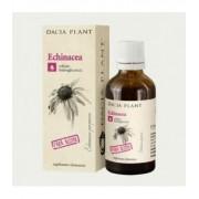 Echinacea (tinctura fara alcool), 50 ml