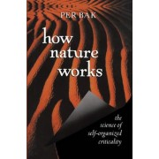 How Nature Works: The Science of Self-Organized Criticality, Paperback