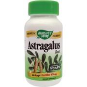 Astragalus 100cps vegetale Antiviral, antitumoral si antibacterian Eficient Pret mic