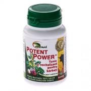 Potent Power 50tablete Ayurmed