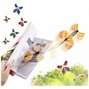 Meglepetés ajándék (felröppenő pillangó)