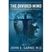 The Divided Mind The Epidemic of Mindbody Disorders