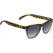 Pepe Jeans Wayfarer Sunglasses(Grey)