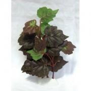 Rostlina sil.střední 16cm E - DOPRODEJ