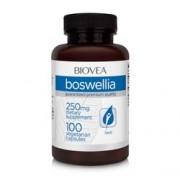 BOSWELLIA 250mg 100 Vegetarian Capsules