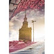 Warszawa Pałac Kultury w odbiciu - plakat premium