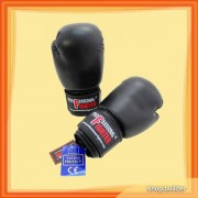 Boxing Gloves Professional Fighter (par)