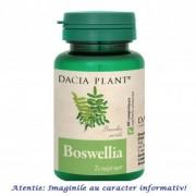 Boswellia 60 comprimate Dacia Plant