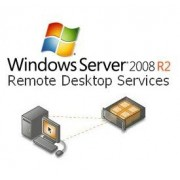 Microsoft Windows Remote Desktop Services CAL Single License/Software Assurance Pack OPEN 1 License No Level User CAL