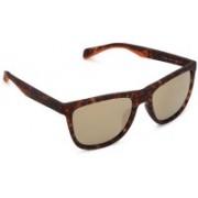 Fossil Wayfarer Sunglasses(Grey)