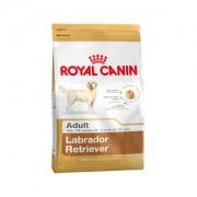 Royal Canin Labrador Retriever Adult - 3 kg