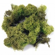 Rayher hobby materialen Lichtgroene decoratie mos