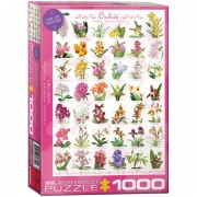 Eurographics Puzzle 1000 piese Orchids