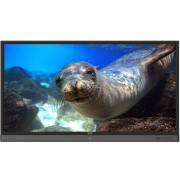 "Benq RP860K Interactive flat panel 86"" LED 4K Ultra HD Black"