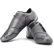 Puma Future Cat M1 Big 102 O Sneakers For Men(Silver)