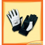 Hand protector (par)
