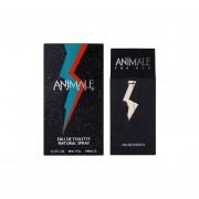 Animale For Men by Animale Eau de Toilette 100 ml