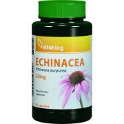 Echinacea (90 caps.)