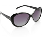 Invu Over-sized Sunglasses(Violet)