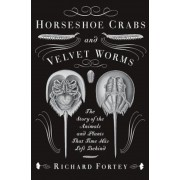 Horseshoe Crabs and Velvet Worms: The Story of the Animals and Plants That Time Has Left Behind, Paperback