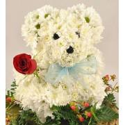 Ursulet din crizanteme