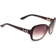 Eyeland Over-sized, Rectangular, Round Sunglasses(Multicolor)
