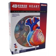 4D Master Human Anatomy Model Heart - 31 Part Puzzle