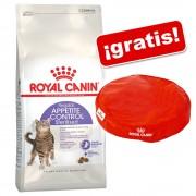 Royal Canin Feline 10 kg + cojín para gatos ¡gratis! - Hair & Skin Care