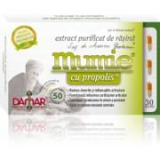 Extract purificat de rasina mumie cu propolis-capsule 30cps DAMAR