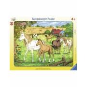 Puzzle Cai La Ferma, 46 Piese Ravensburger