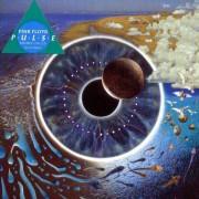 Pink Floyd - Pulse (0724349143623) (2 CD)