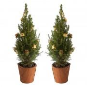 Mini-kerstboom met gouden slingers (set 2)