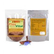 NutrActive Flaxseed / Flax Vital / Roasted and Salted Flaxseed / Fatty Acid 300 gm