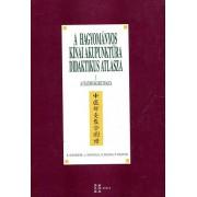 A hagyományos kínai akupunktúra didaktikus atlasza ( HKO)
