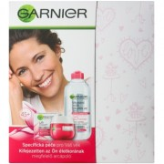 Garnier Skin Naturals coffret I.