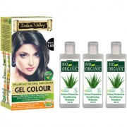 Organic Black Hair Colour And 3 Colour Protective Shampoo For Shiny Hairs Set Of 4