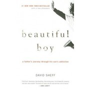 Beautiful Boy: A Father's Journey Through His Son's Addiction, Paperback/David Sheff