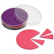 Didax Fraction Circles Manipulatives - 51pc set