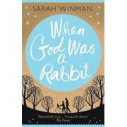 When God was a Rabbit, Paperback